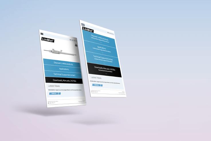 Strona internetowa dla LinMot